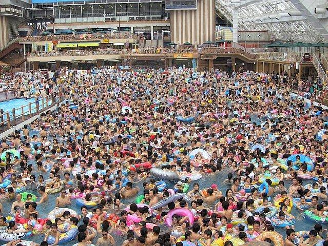 「サマーランド プール 」の画像検索結果